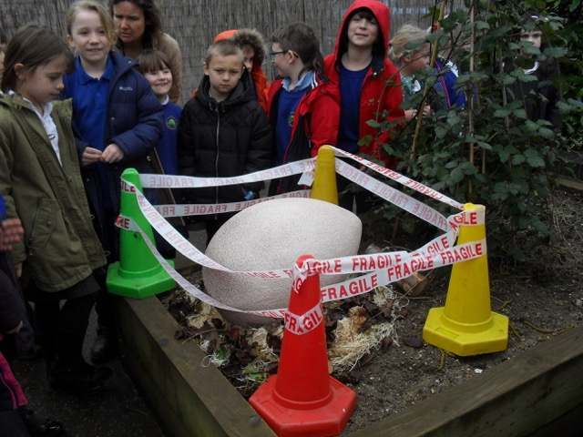 Year 3 Egg Discovery