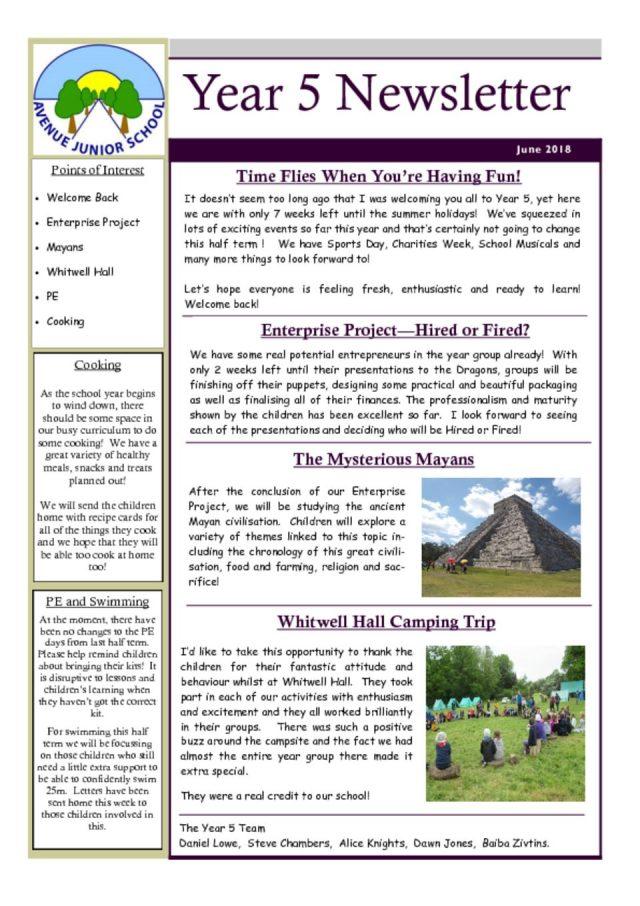 thumbnail of Year 5 Newsletter June 2018
