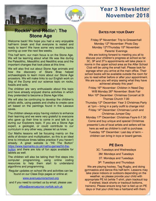thumbnail of Year 3 Newsletter November